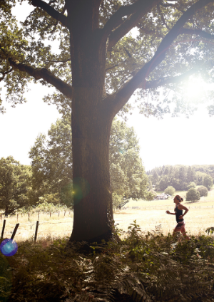 Wendy Quere hardlopend park Klarenbeek Arnhem